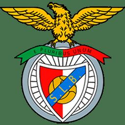 Benfica Escola de Futebol Estádio