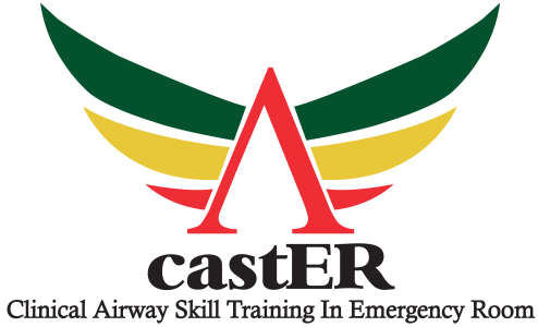 cropped-castER-LOGO-plain-backgrd-4.png