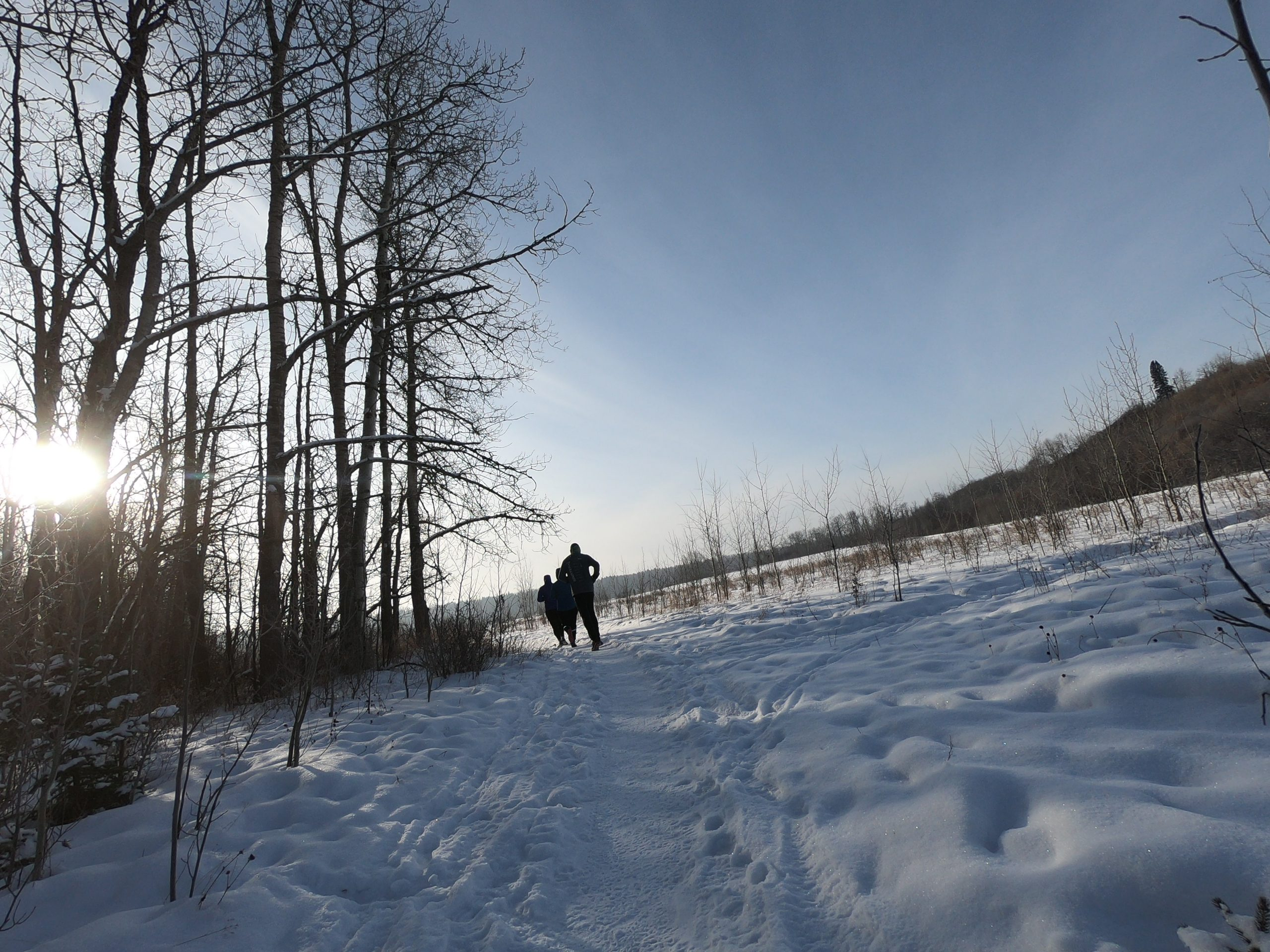 Three people run down a snowy wilderness trail.