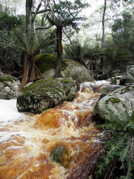 travel flinders island