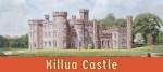 Featured image for Killua Castle