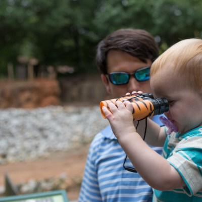 Visiting the Zoo with Toddlers: What to Bring