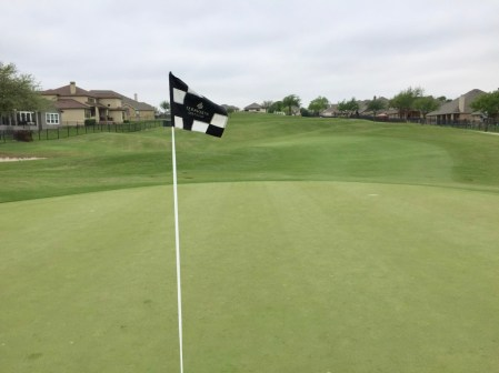 11th green reverse view.