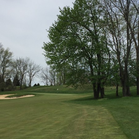More trees guarding approach to 7th green.