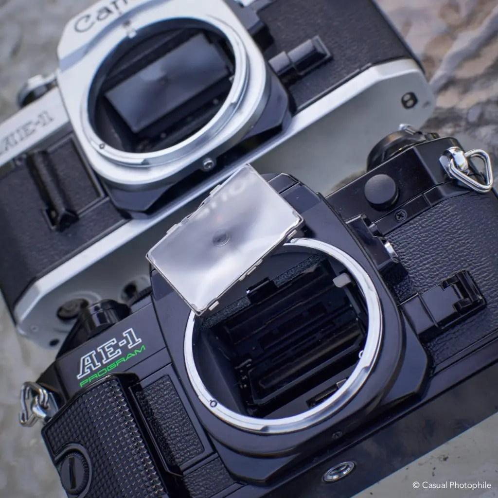 Canon AE-1 vs Canon AE-1 Program Camera Review 6