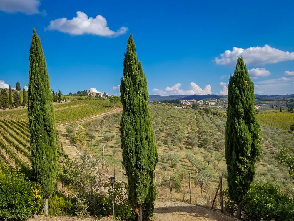 Tips for Choosing the Best Wine Tour in Tuscany for You
