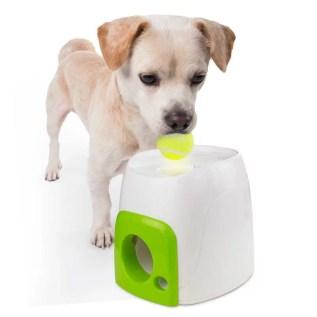 juguete inteligente para perros en miraflores lima peru