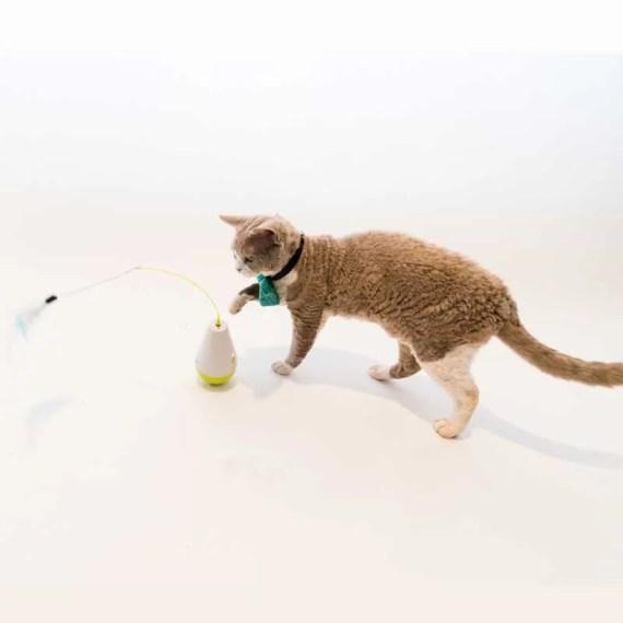 3203 juguete inteligente para perros en lima peru miraflores surco