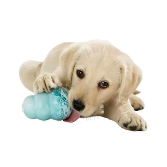 juguete para perro para morder kong peru KP3 KP2 KP1
