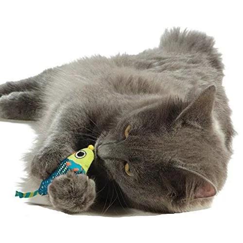 peluche raton para gatos limpiadientes
