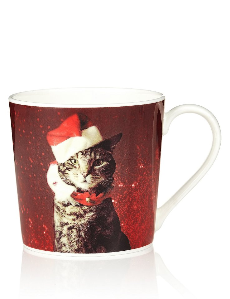 Marks and Spencer cat mug