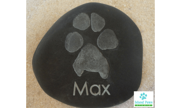 stone paw print with