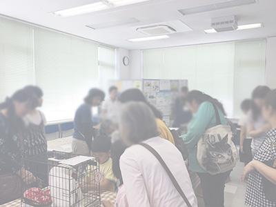 20190526譲渡会風景03