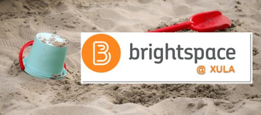 Brightspace sandbox course banner