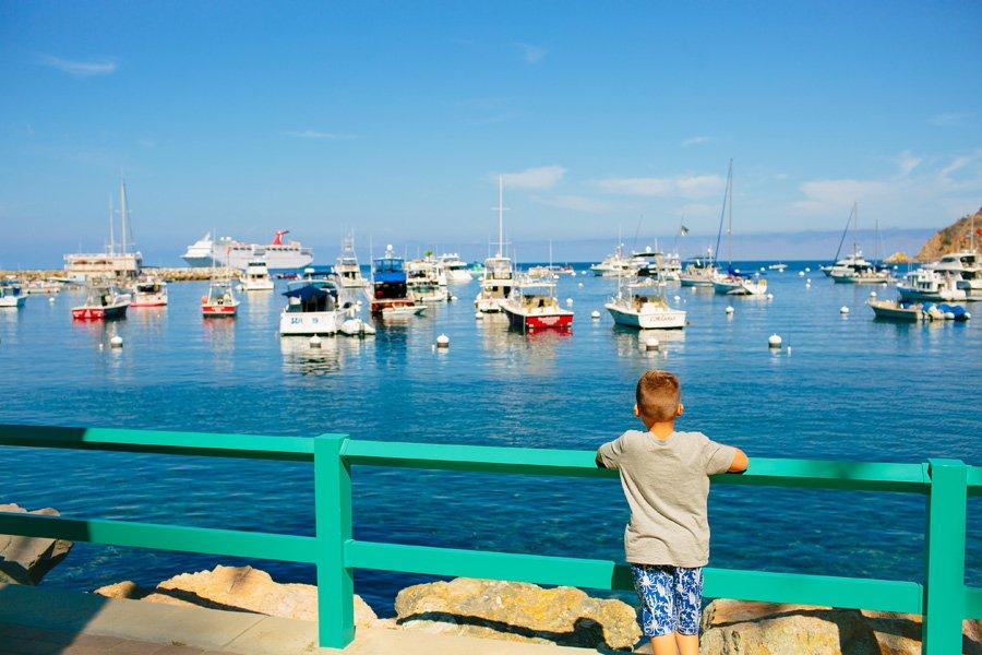 Family Vacation Ideas Reasons To Go To Catalina Island Catalina Express