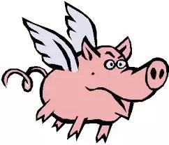 Zbură porcul
