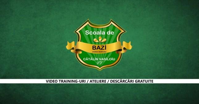 Curs BaZi