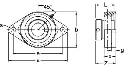 Eccentric Collar Locking Two-Bolt Flange Unit, UGFJT200