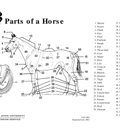 parts of a horse teaching aid osu extension catalog oregon state university [ 1651 x 1275 Pixel ]