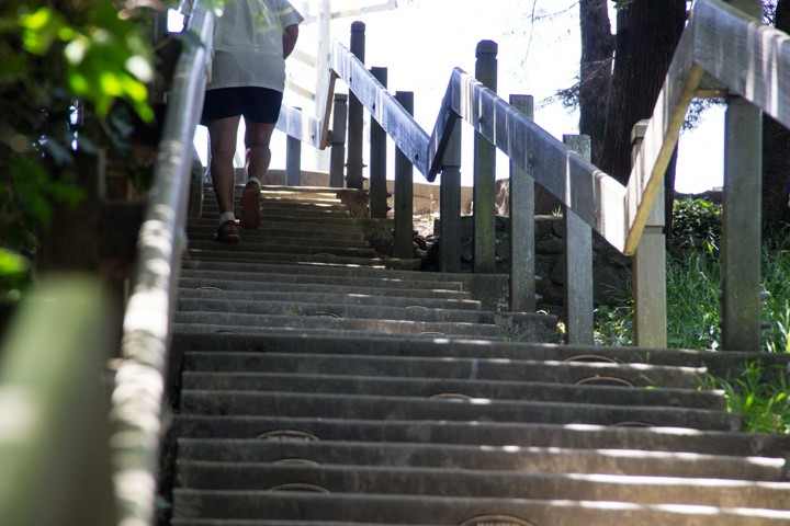 Dipsea Stairs – The Top