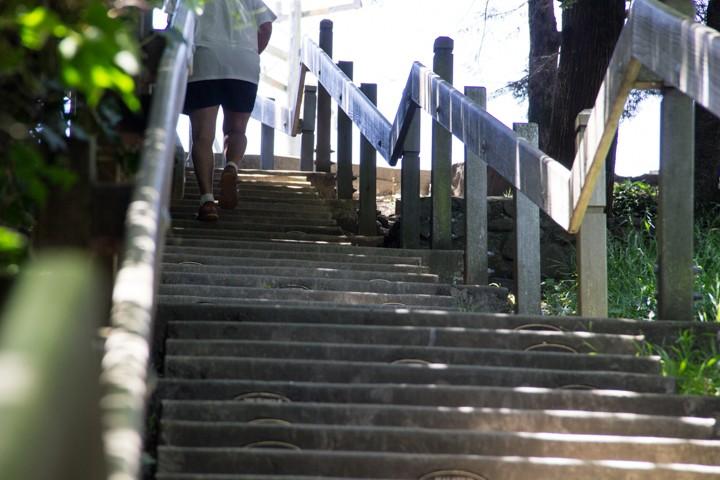 Dipsea Stairs - The Top - SKU: CA_DIP_0066