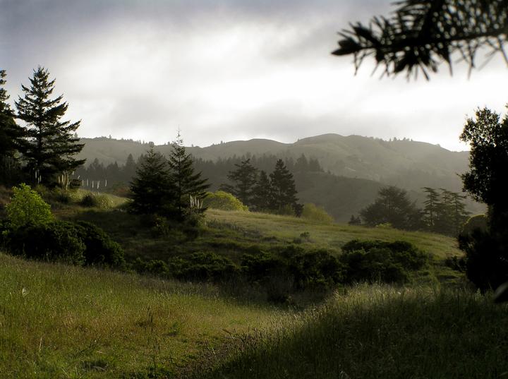 San Geronimo Valley rolling green hills
