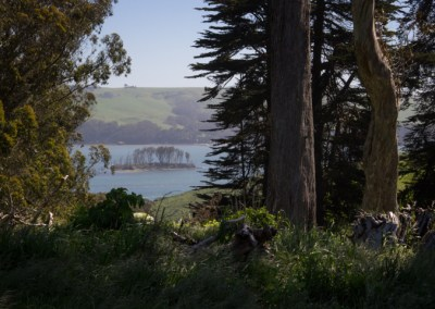 View of Tomales Bay from Point Reyes