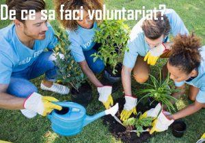 De ce sa faci voluntariat