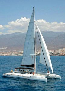 Catamaran Tenerife Freebird