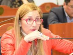 Analia Brizuela, Diputada Analia Brizuela