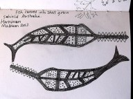 Sawfish Shell Carving pen and pencil drawing