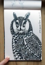 Long-eared Owl, black pen © Catherine Cronin