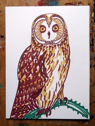 Short-eared Owl, marker pens © Catherine Cronin