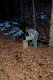 M. helping out with the sap buckets