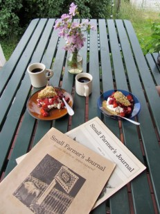 Early summer breakfast on the porch