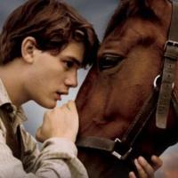 """""""Cavalo de guerra"""", um pangaré do Spielberg..."""