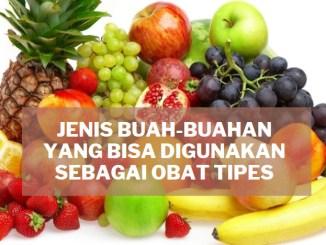 jenis buah-buahan yang dapat digunakan sebagai obat tipes