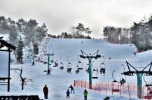 lift ski