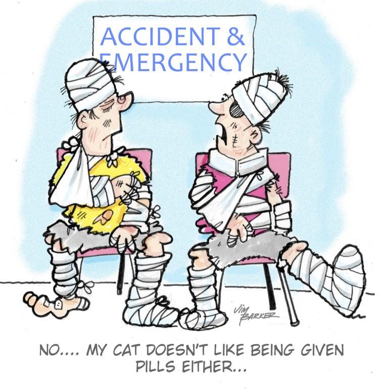 PILLS & DRUG COMPOUNDING | Cat Authors