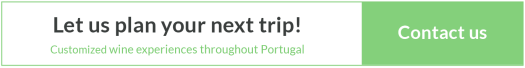Custom Wine Tours Portugal