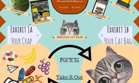 CatBagz.com Presents - How To Use A Cat Bag