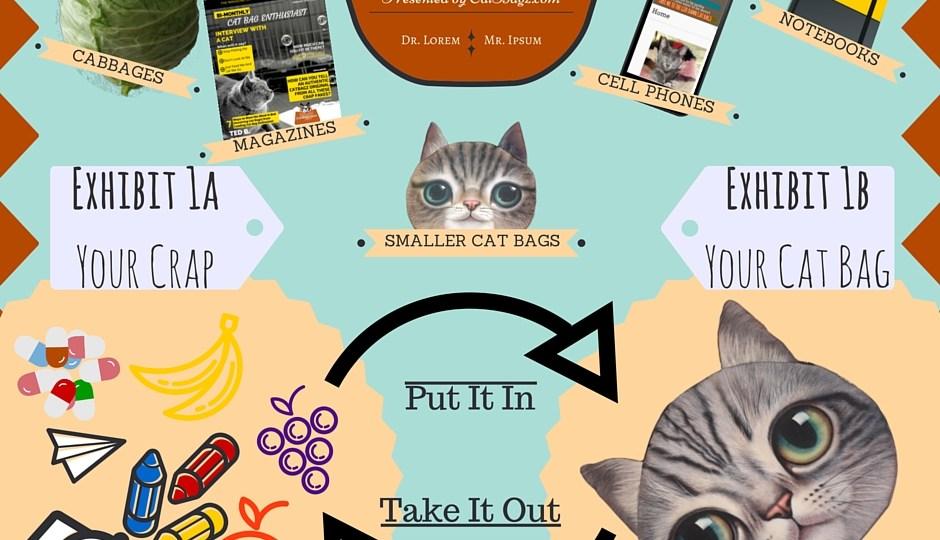 CatBagz.com Presents – How To Use A Cat Bag