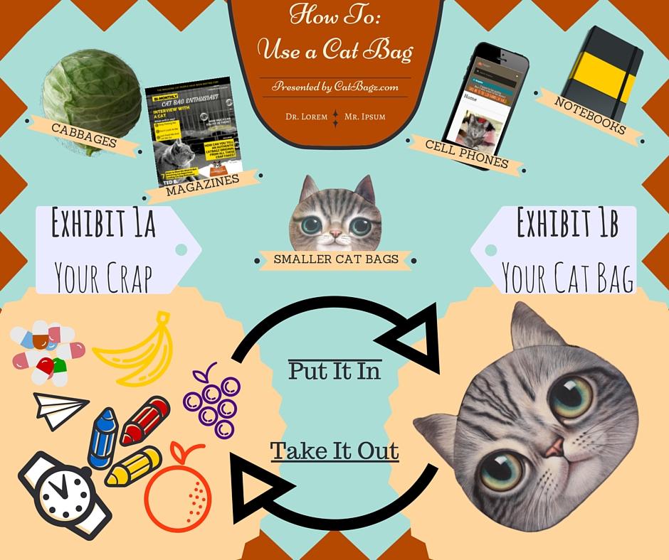 CatBagz.com Presents - How To Use A Cat Bag