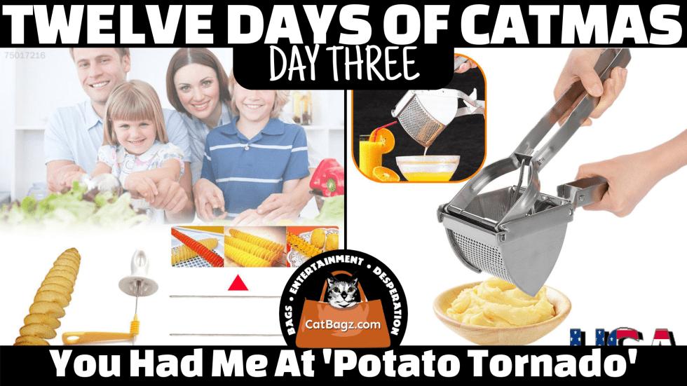Twelve Days of Catmas – Day 3