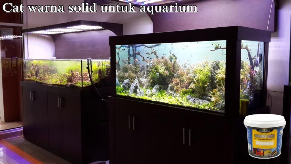 cat-untuk-aquarium