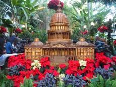 U.S. Capitol at the U.S. Botanic Garden