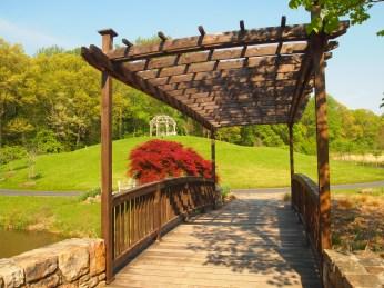 Arbor bridge