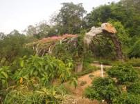 Guangxi Medicinal Plant Garden