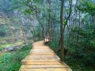 Walkway along Golden Whip Stream