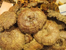 cap mushrooms